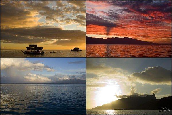 Tahiti-Moorea-05