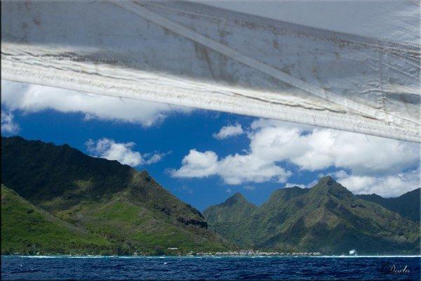 Tahiti-Moorea-10