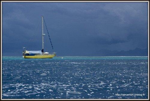 POLYNESIE 2012 dans 017 - Polynésie 2012 1.polynesie-2013