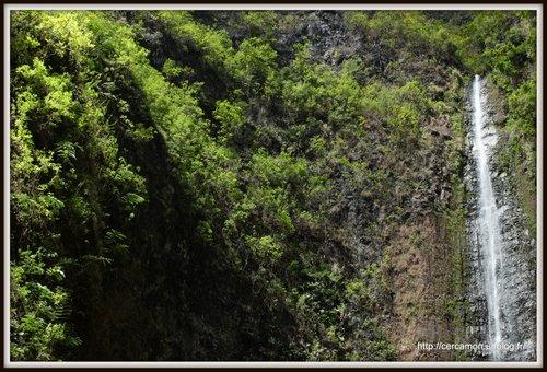 14.polynesie-2013