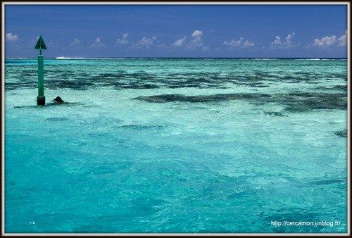 3.polynesie-2013 dans 017 - Polynésie 2012