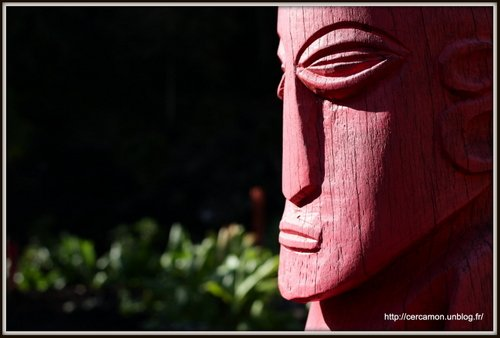 31.polynesie-2013